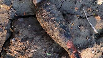Lagi Warga Karawang Heboh Karena Diketemukannya Sejumlah Mortir di Telukjambe Barat