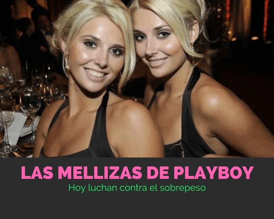 mellizas de playboy