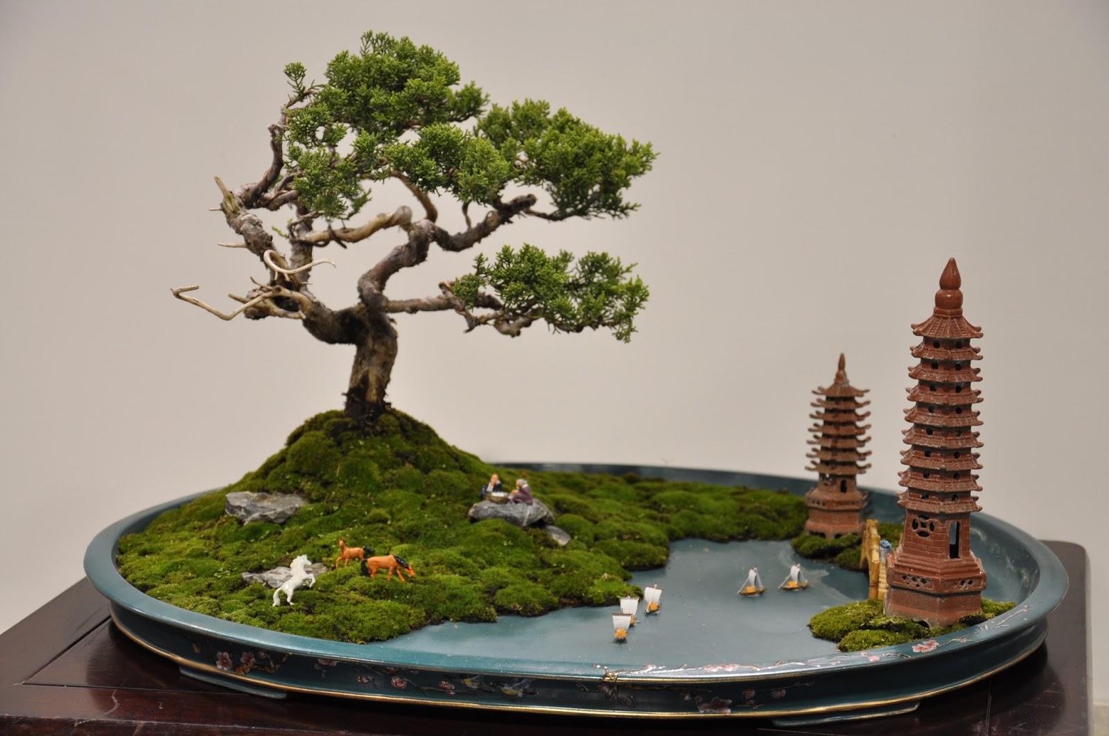 Ceramic Pots Online
