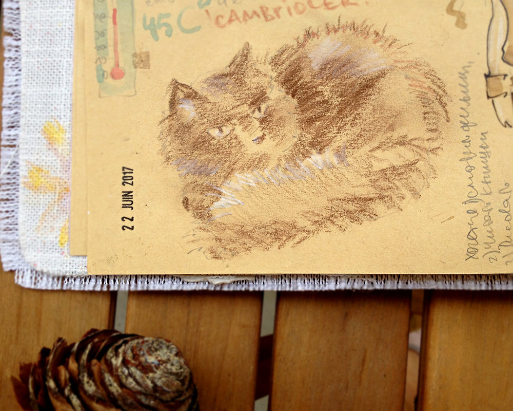 Pouchkine Cat in my diarybook