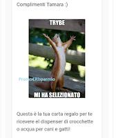 Logo Trybe: sei anche tu una delle tester dispenser crocchette per cani e gatti?