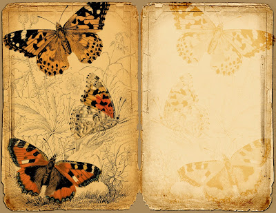 Butterflies, Bees and Bugs....Plus a Freebie