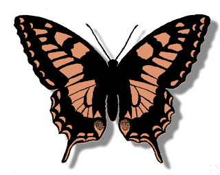 butterfly digital clip art download silhouette