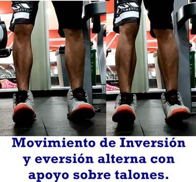 Movimiento de inversión y eversión para estimular los músculos fibular y tibial