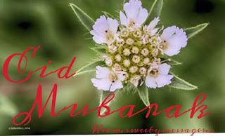 happy eid holiday