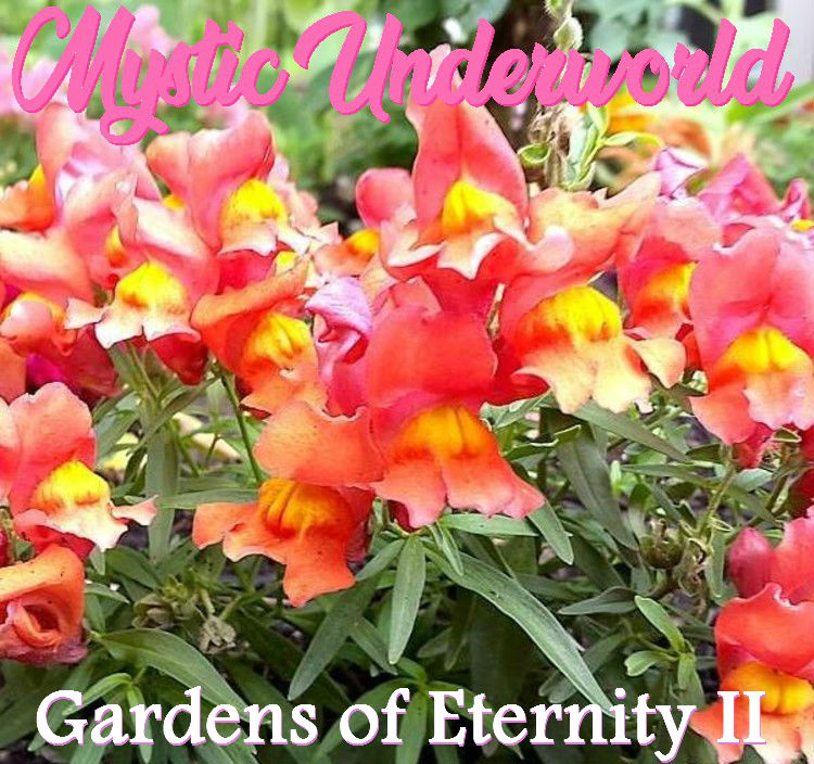 Gardens of Eternity Part II Front Cover