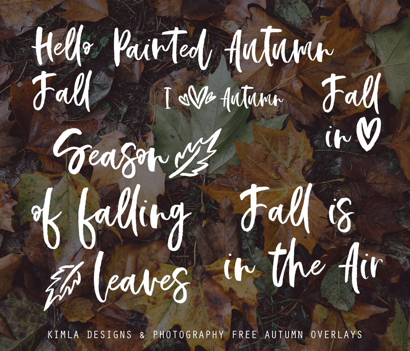 Free Autumn Overlays for Photographers