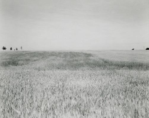 """from """"Illinois landscapes"""" - 1980 - photo by Rhondal Mckinney   sad black and white photos   imagenes bellas de soledad y tristeza, fotos en blanco y negro bonitas"""