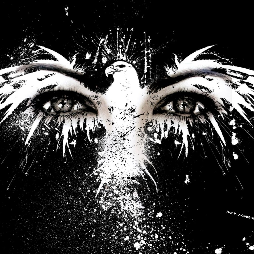 Newest Wall On: Eagle Hd Wallpaper Eagle Eyes Common
