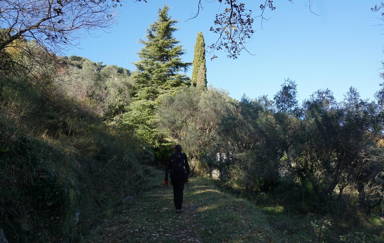 Start of the path to Canal de la Gravière
