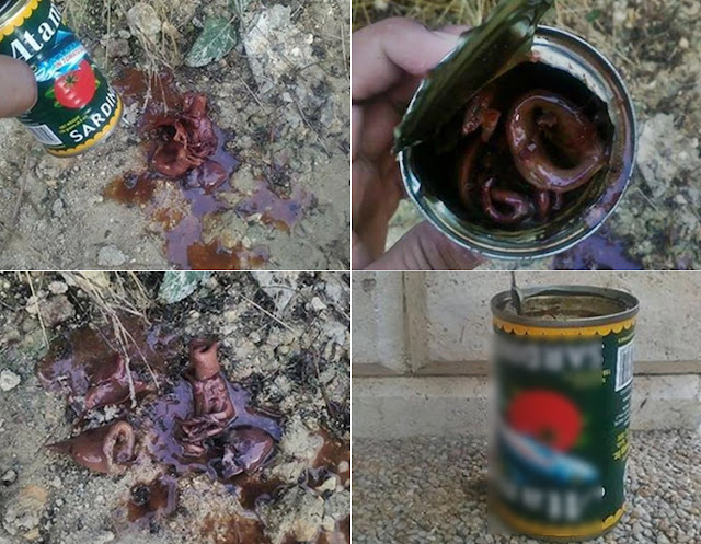 He Bought Two Cans Of Sardines. What He Saw When He Opened Them Left Him Shocked!