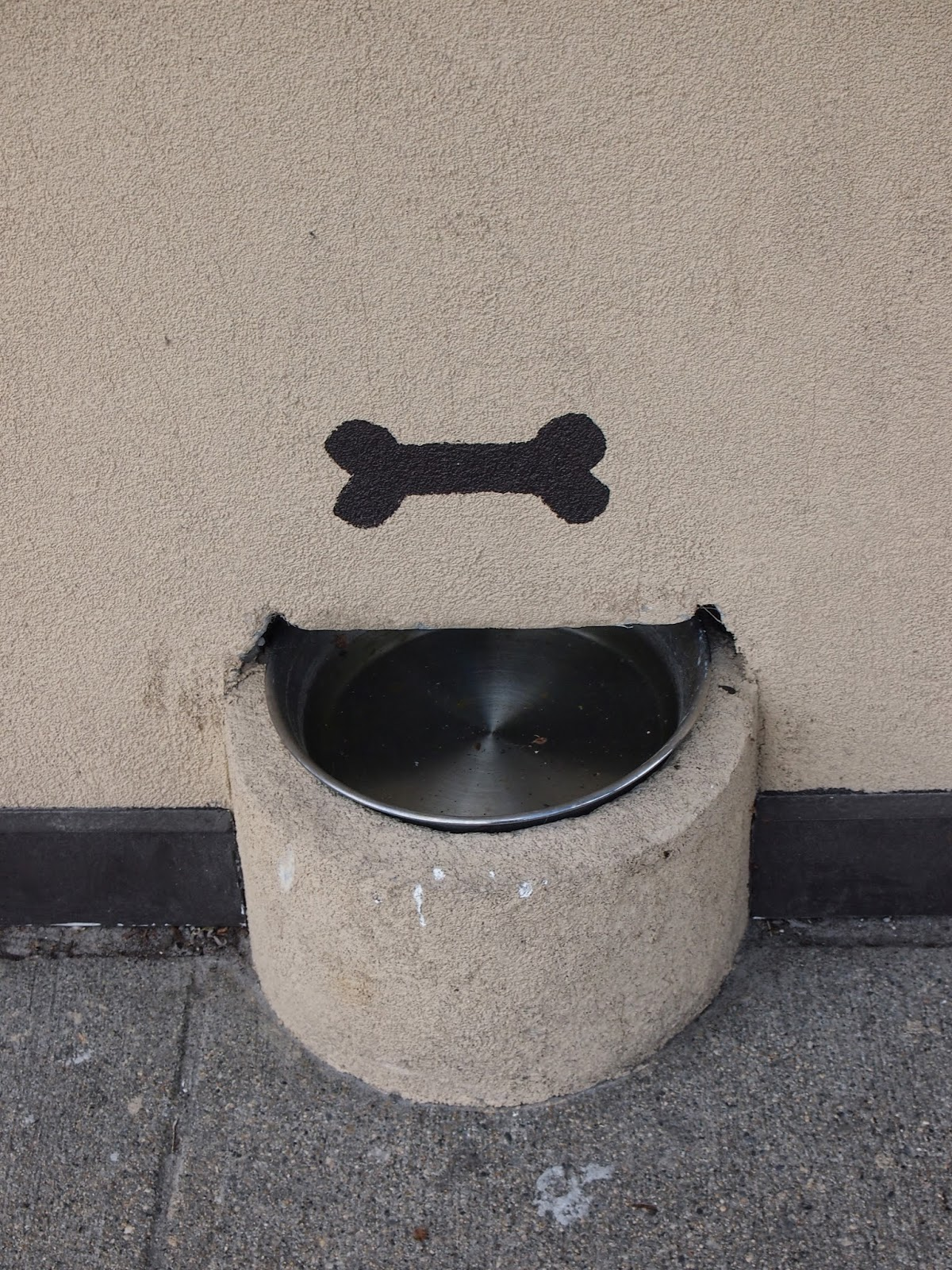 dog bowls for east greenwich