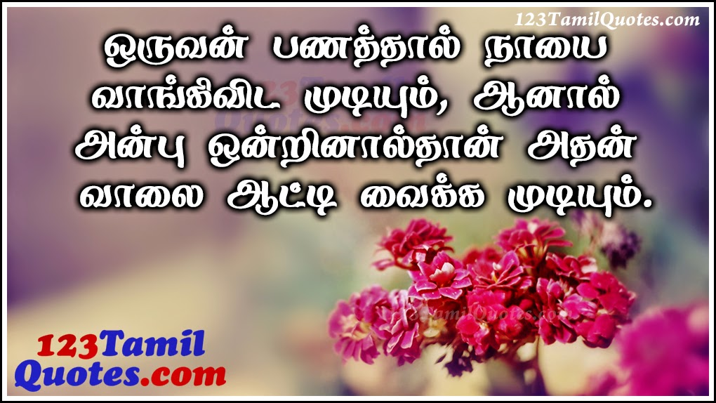 Money And Love Quotes In Tamil Love Quotes Everyday