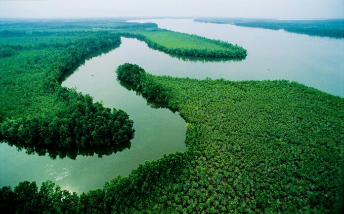 The River Niger In Nigeria