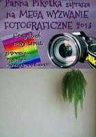 http://misiowyzakatek.blogspot.com/2013/08/prostota-wyzwanie-foto.html