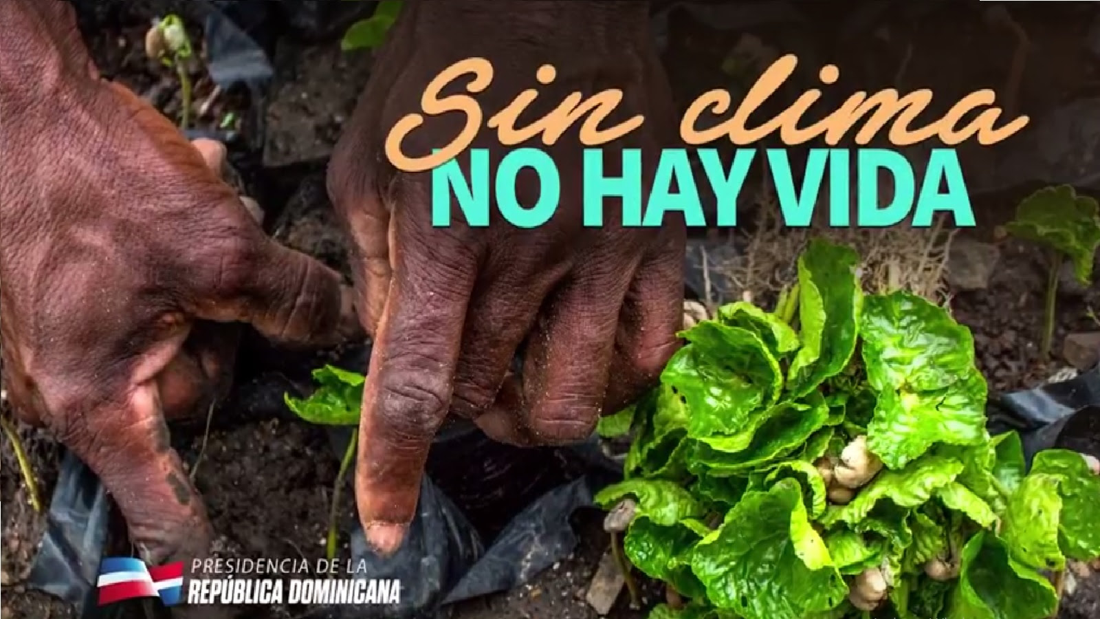 VIDEO: Sin clima no hay vida