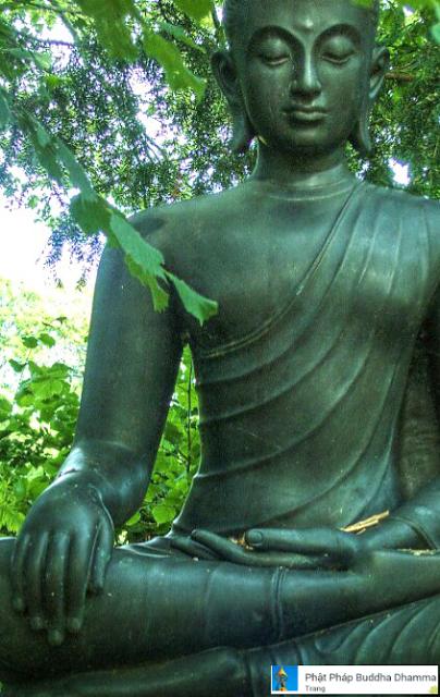 Đạo Phật Nguyên Thủy - Kinh Tăng Chi Bộ - Nhen nhúm ngọn lửa