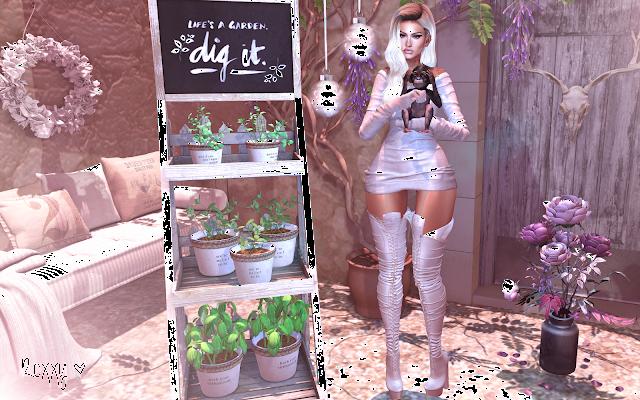 Life´s a garden