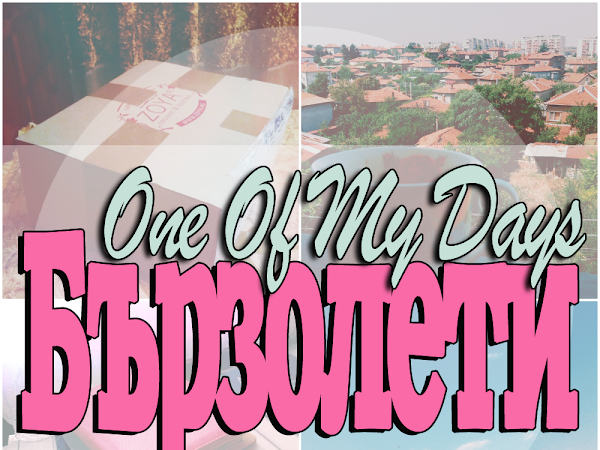 One Of My Days: Бързолети