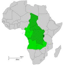 Where is Central Africa?