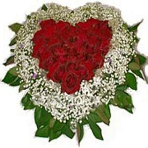 Send Flowers To India From Usa Uk India Flower Plaza