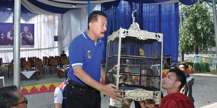 Turnamen Burung Kicau Ridho Ficardo Cup Lombakan 31 Kelas