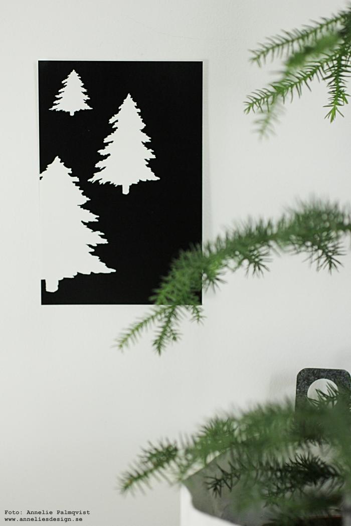vykort, gran, granar, svart och vitt, svartvita, annelies design, webbutik, webbutiker, webshop, nätbutik, nätbutiker, poster, psoters, print, prints, konsttryck, julen 2016, julkort, juldekoration, julpynt, runsgran, rumsgranar,