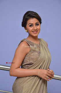 Nikki Galrani in Saree 009.JPG