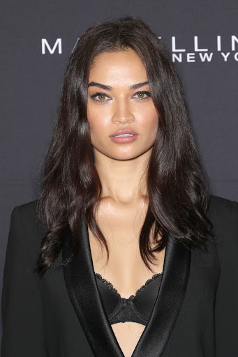 Shanina Shaik red carpet dresses photo