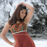 Richa gangopadhyay latest spicy photos