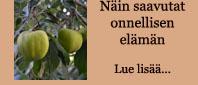 http://viranomaisenvalvoma.blogspot.fi/2015/02/nain-saavutat-onnellisen-elaman.html