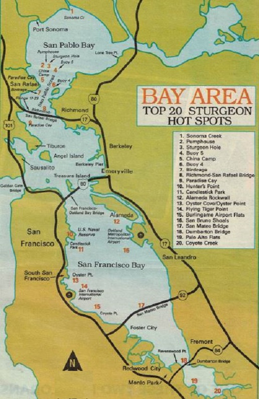 2018 BAY STURGEON FISHING MAP REPORT  PUBLIC HUNTING AREAS  AND     Fishing Map of SF Bay