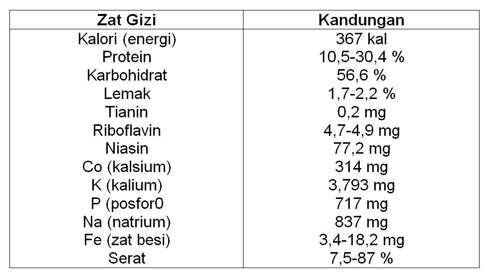 Berbagai Manfaat dan Risiko Makan Jamur Bagi Kesehatan