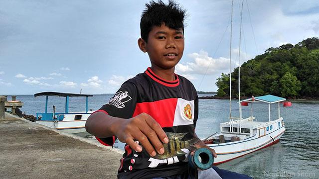 Hasil tangkapan anak Karimunjawa di pelabuhan