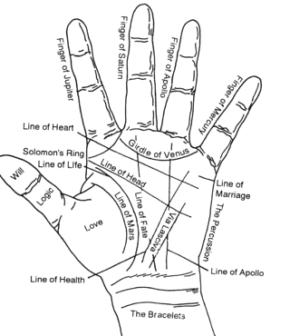 Diagram Of Hand In Palmistry