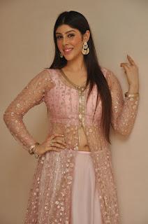 Actress Aditi Singh Latest Stills in Designer Dress at Guppedantha Prema Pressmeet 0006.jpg