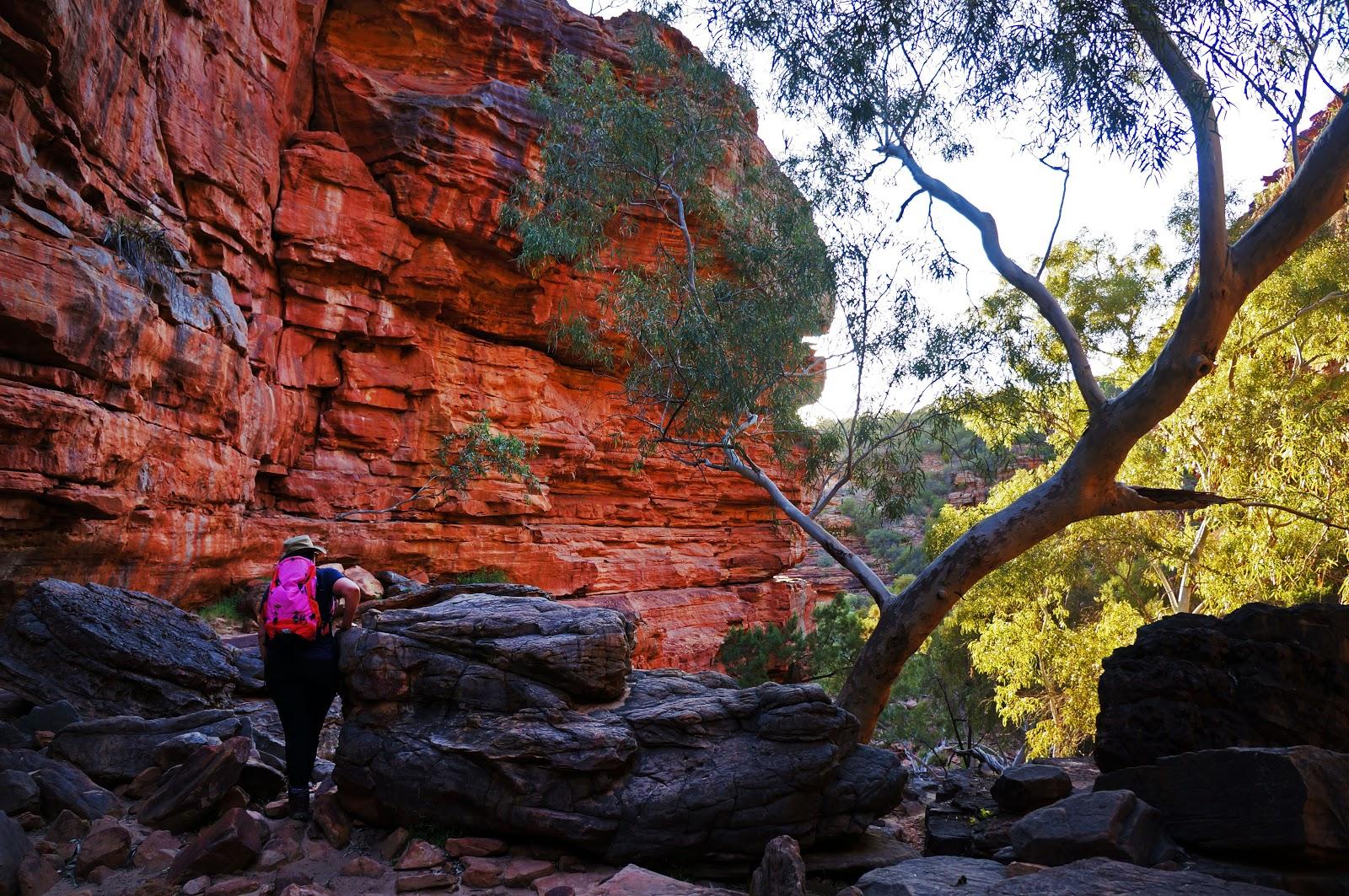 Z Bend River Trail Kalbarri National Park The Long Way