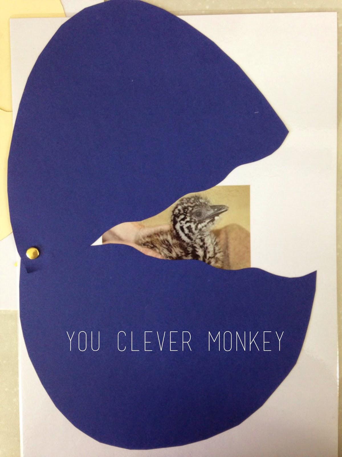 Pre-K Bird Unit of Work #youclevermonkey