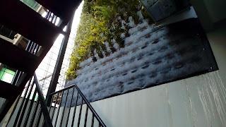 Jasa Pembuatan Vertical Garden,Taman Vertikal