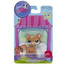 Littlest Pet Shop Singles Cat (#3578) Pet