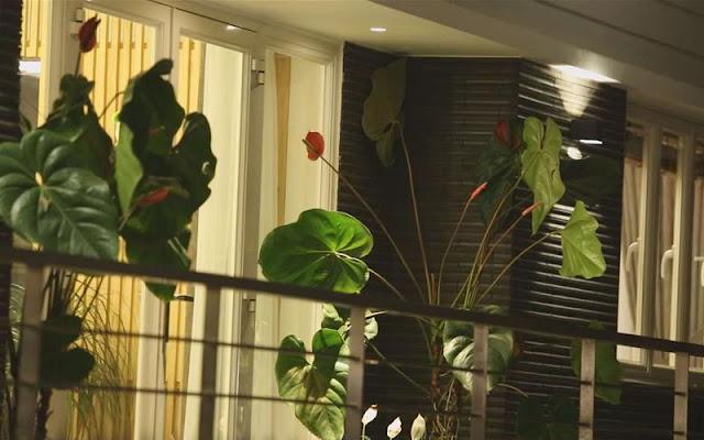 Khách sạn giá rẻ Đà Lạt du khách nên click xem khi du lịch tại phố sương mù này