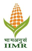 IIMR logo image