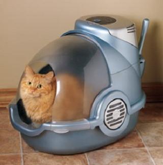 Prepare cats litter box