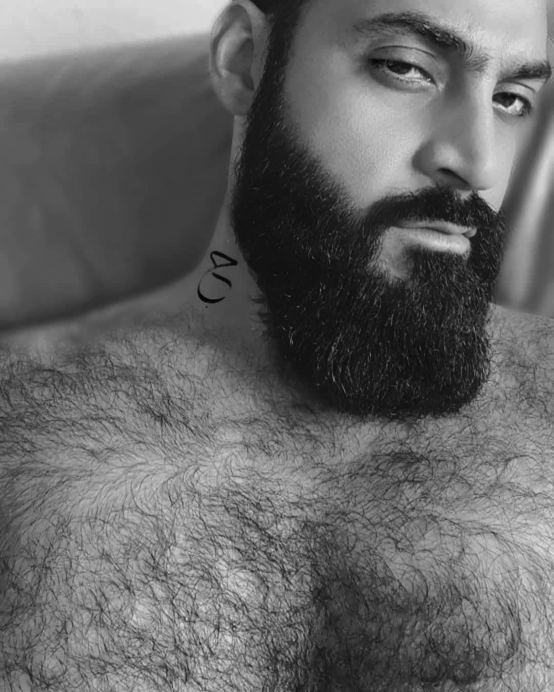BeaR, by Morad Badrah.