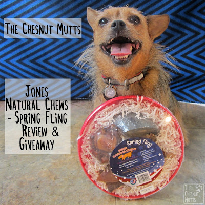 The Chesnut Mutts Jones Natural Chews - Spring Fling Review and Giveaway
