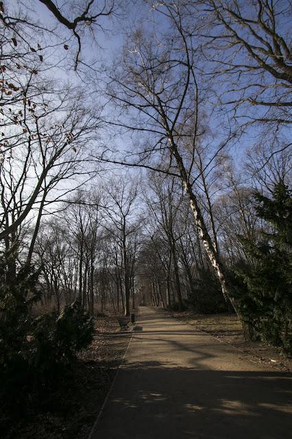 Parco Tiergarten-Berlino