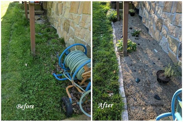 Rock garden DIY