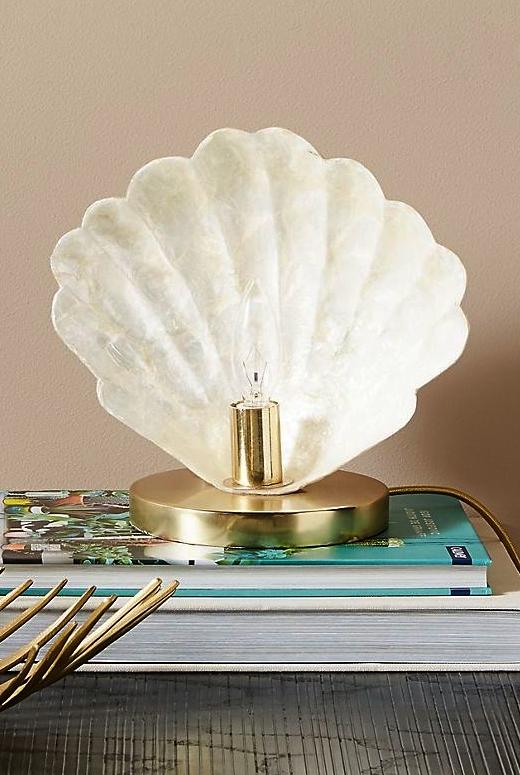 Shell Figurine Sculpture Light