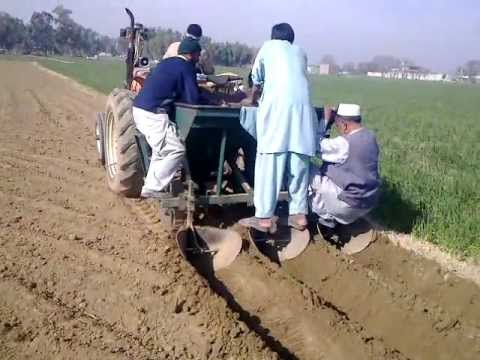 punjab Agriculture Forum