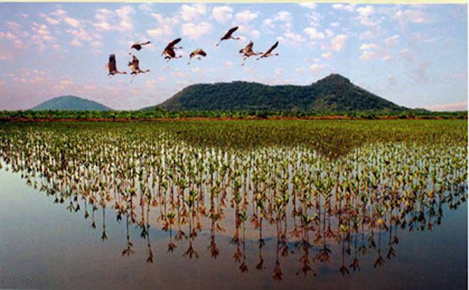 Đến Kiên Giang mùa hè, thiên đường của những hòn đảo đẹp như tranh vẽ - Ảnh 4